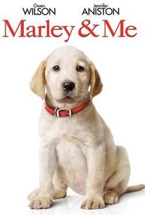 Marley Me 2008 Rotten Tomatoes
