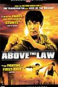 Above the Law (Zhi fa xian feng)