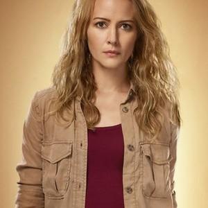 Amy Acker as Caitlin Strucker
