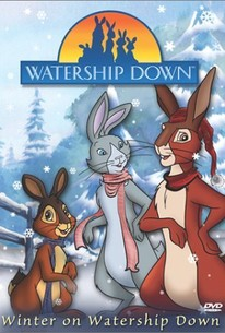 Winter In Watership Down