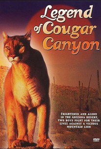 The Secret of Navajo Cave (Legend of Cougar Canyon)