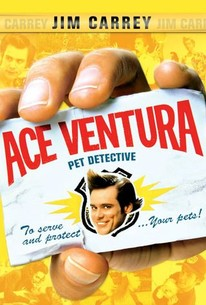 ace ventura pet detective hindi movie download