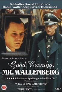 Good Evening, Mr. Wallenberg