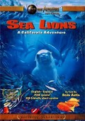 Sea Lions: A California Adventure