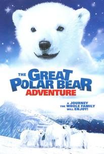 The Great Polar Bear Adventure