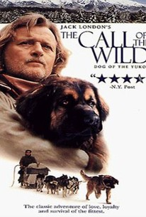 Jack London's 'The Call of the Wild'