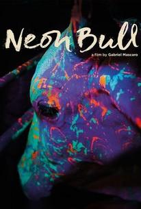 Neon Bull (Boi Neon)