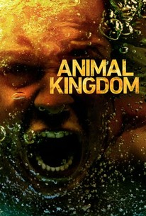 Animal Kingdom S3 (2018) Subtitle Indonesia