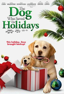 The Dog Who Saved the Holidays
