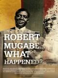 Robert Mugabe... What Happened?