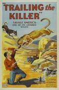 Trailing the Killer