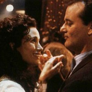 Groundhog Day Movie Quotes Brilliant Groundhog Day  Movie Quotes  Rotten Tomatoes