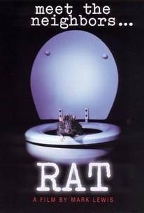 Rat: Meet the Neighbors