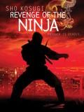 Revenge of the Ninja