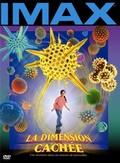 The Hidden Dimension