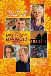 The Best Exotic Marigold Hotel (2012)