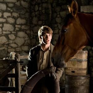 war horse movie free download in hindi