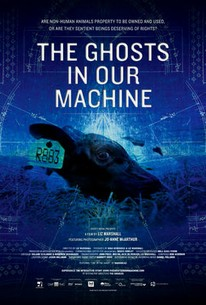 Sustainable Cinema: The Ghosts In Our Machine