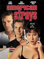American Strays
