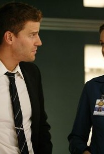 Bones - Season 4 Episode 5 - Rotten Tomatoes