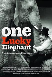 One Lucky Elephant