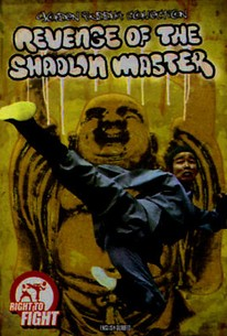 Revenge of the Shaolin Master