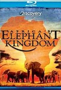 IMAX - Africa's Elephant Kingdom