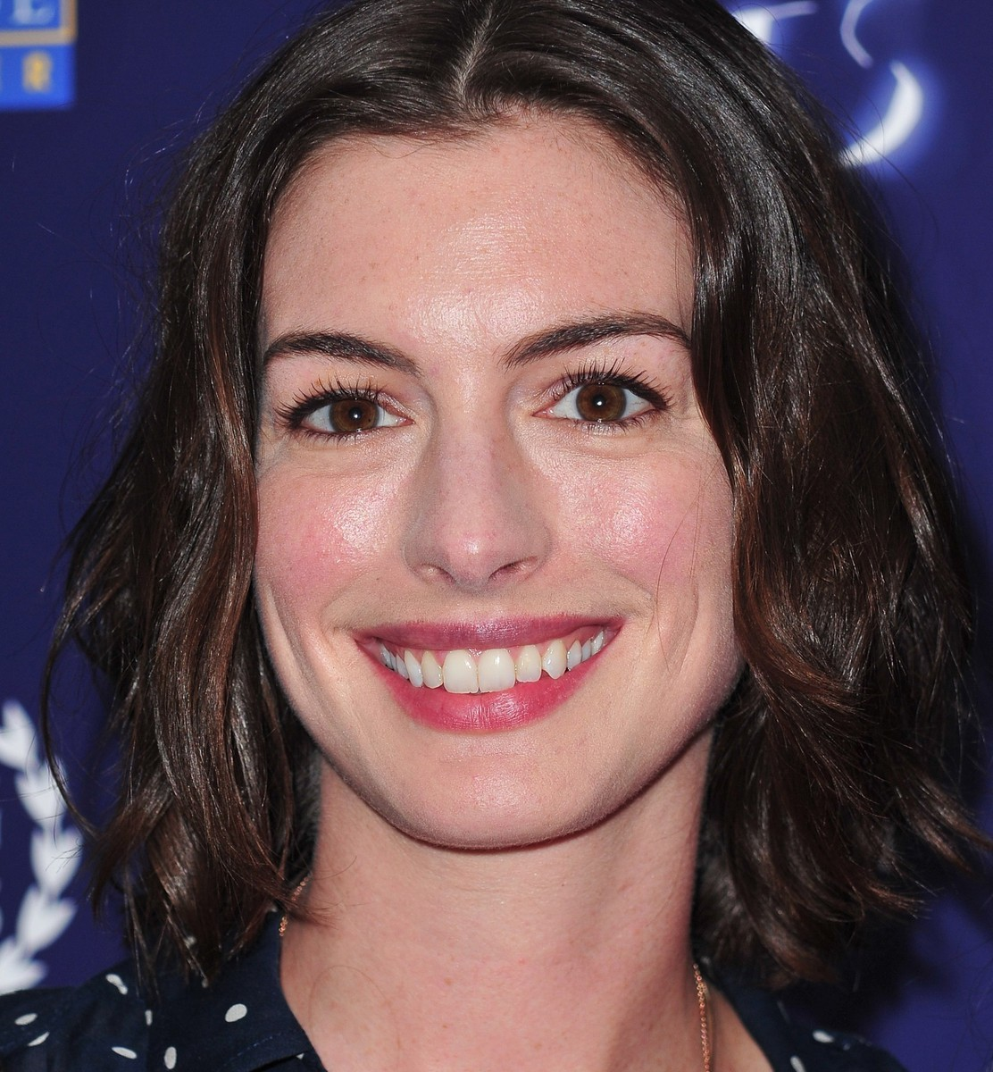 Anne Hathaway Rotten Tomatoes