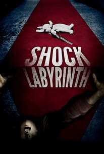 The Shock Labyrinth 3d (senritsu Meikyu 3d)