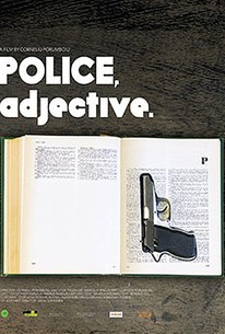 Politist, adj. (Police, Adjective)