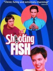 Shooting Fish