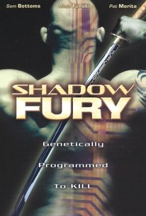 Shadow Fury