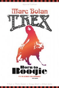 Marc Bolan & T-Rex - Born to Boogie