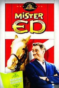 Mister Ed - Barnyard Favorites