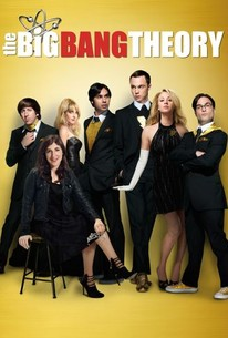 big bang theory staffel 1 stream