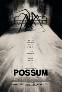 Image result for possum movie