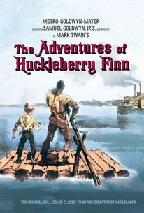 an analysis of the character of huck finn in the novel the adventures of huckleberry finn by mark tw A picaresque novel is based on a story that is typically satirical and illustrates with realistic and witty detail the adventures of a roguish hero of lower social standing who lives by their common sense in a corrupt society the adventures of huckleberry finn by mark twain, is an eminent example .