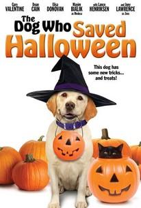 The Dog Who Saved Halloween