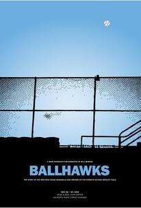 Ballhawks