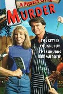 A Perfect Little Murder