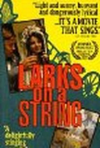 Larks on a String (Skrivánci na niti)