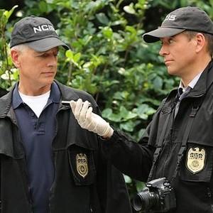 NCIS, Season 12: Mark Harmon and Michael Weatherly