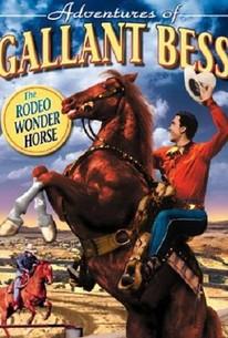 Adventures of Gallant Bess