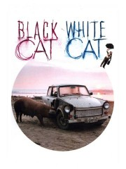 Crna macka, beli macor (Black Cat, White Cat) (1999)