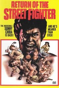 Return of the Street Fighter