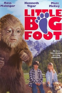 Little Bigfoot