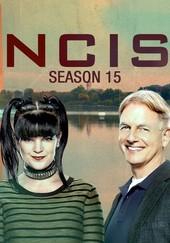 Navy NCIS: Season 15