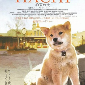 hachi a dogs tale movie download 720p