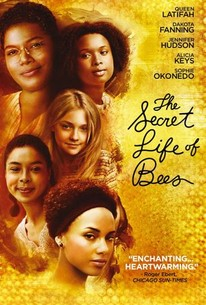 Quotes In The Secret Life Of Bees Stunning The Secret Life Of Bees  Movie Quotes  Rotten Tomatoes