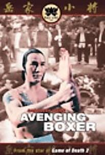 Avenging Boxer